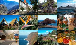 Madeira_colagem_das_fotos_12